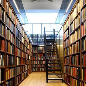 Библиотеки Камышина