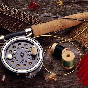 Охотничьи и рыболовные магазины Камышина